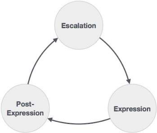 Aggression Phases